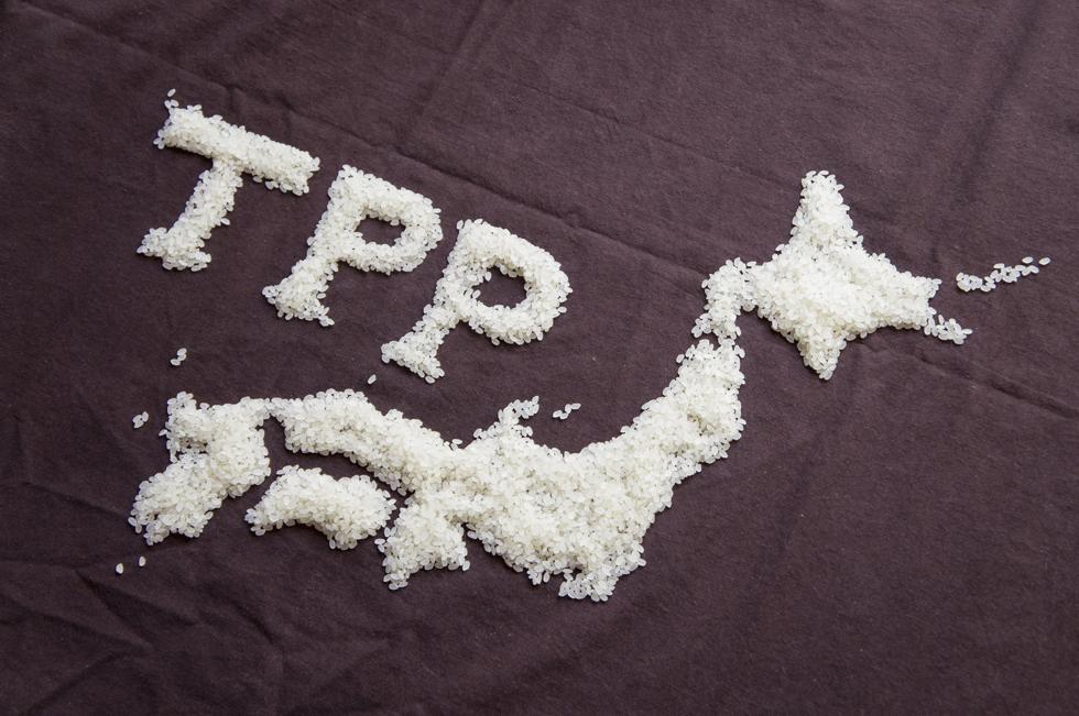 TPP交渉は長期戦を覚悟しつつも交渉の行方を見守るべき
