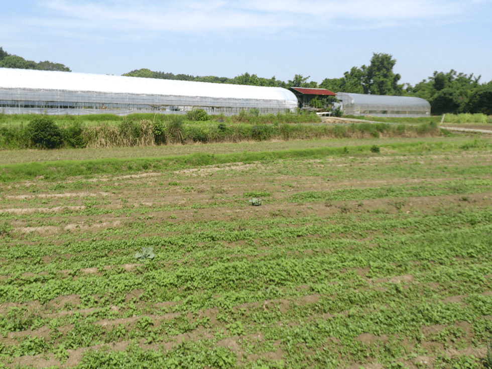非常に多い耕作放棄地を減らしていくことも一つの方法