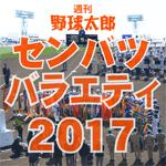 週刊野球太郎 高校野球・ドラフト情報#1 記事画像#7
