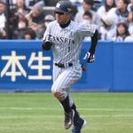 週刊野球太郎 日刊トピック#29 記事画像#17