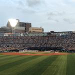 週刊野球太郎 野球エンタメコラム#1 記事画像#3