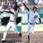 週刊野球太郎 人気記事ランキング#1 記事画像#13
